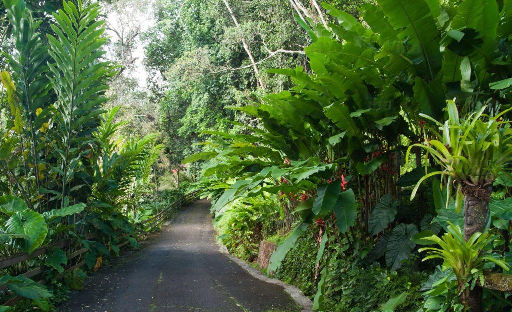 Petit-bourg-Les-jardins-de-valombreuse